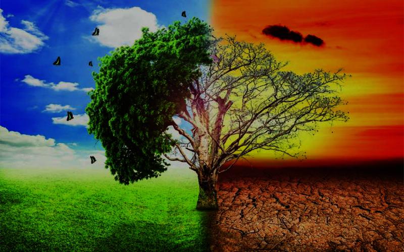জলবায়ু পরিবর্তন মোকাবেলায় বাংলাদেশসহ ঝুঁকিপূর্ণ দেশে ৬৩ হাজার কোটি টাকা দেবে যুক্তরাজ্য