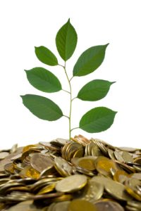 গ্রীন ব্যাংকিং   The Green Banking - ethical banking or a sustainable banking