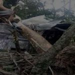 বরগুনায় বুলবুলের তাণ্ডবে ৫ হাজারের বেশি ঘরবাড়ি বিধ্বস্ত, ব্যাপক ক্ষয়-ক্ষতি