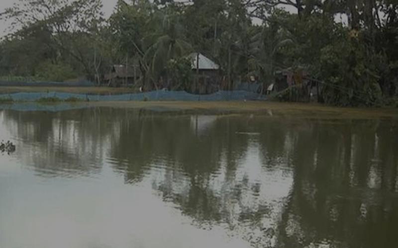 ঘূর্ণিঝড় 'বুলবুলের' প্রভাবে জলোচ্ছ্বাস, ৩০ কোটি টাকার বেশি মাছের ক্ষতি
