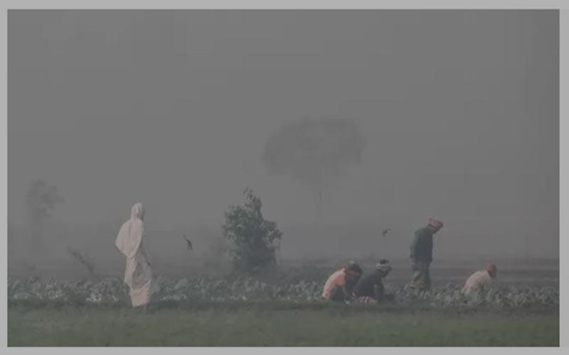তেঁতুলিয়ায় সর্বনিম্ন তাপমাত্রা রেকর্ড