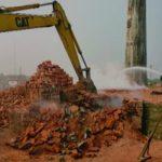 ইটভাটার কারণে পরিবেশ দূষণ: গুঁড়িয়ে দেওয়া হয়েছে অবৈধ ইটভাটা