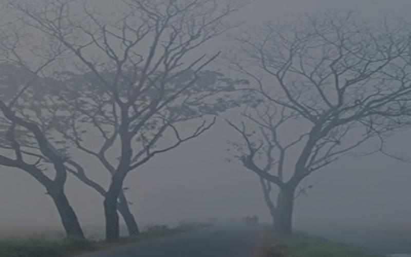ডিসেম্বর মাসের শেষার্ধে তীব্র শৈত্যপ্রবাহ, তাপমাত্রা ৬ ডিগ্রিতে নামার আশঙ্কা