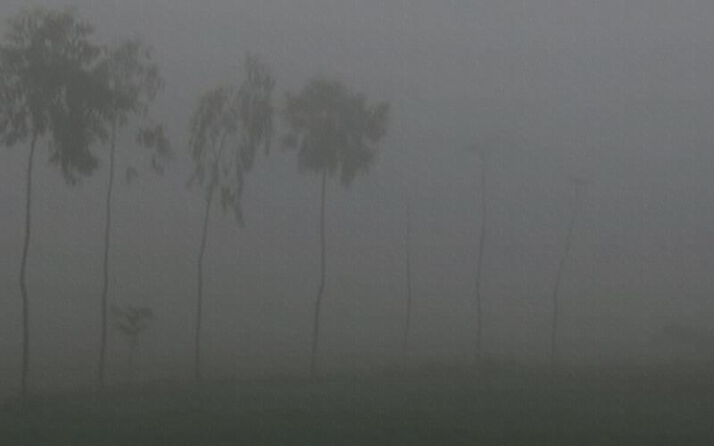 ফুলবাড়ীতে তীব্র শীত, তাপমাত্রা নেমে ৭.২ ডিগ্রী