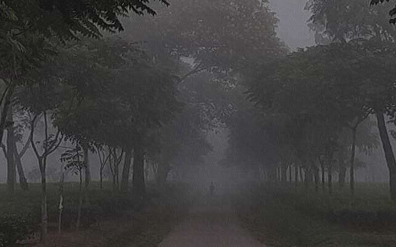শ্রীমঙ্গলে দেশের সর্বনিম্ন তাপমাত্রা ৬ডিগ্রি সেলসিয়াস রেকর্ড