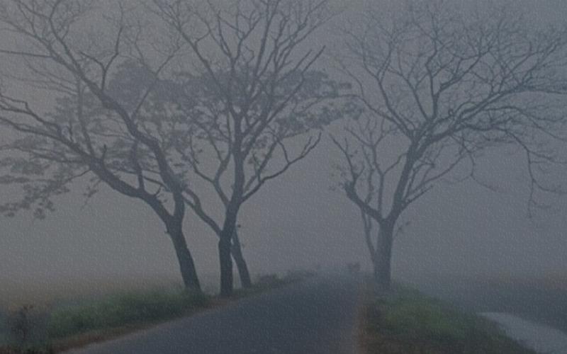 তেঁতুলিয়ায় দেশের সর্বনিম্ন তাপমাত্রা রেকর্ড ৬.৮ ডিগ্রি সেলসিয়াস