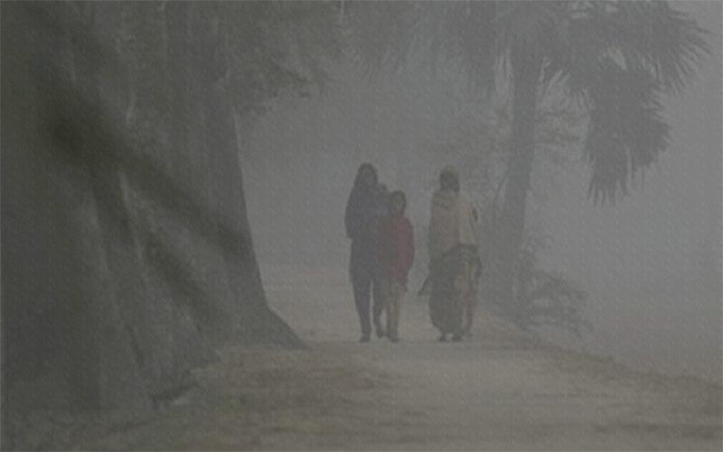 হিমালয়ের হিম বাতাসে তেঁতুলিয়ায় তাপমাত্রা কমে ৭.২ ডিগ্রিতে