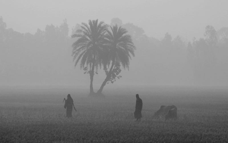 উত্তরাঞ্চলসহ দেশের কয়েকটি অঞ্চলে বয়ে যাচ্ছে মৃদু শৈত্যপ্রবাহ