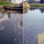 শিল্পবর্জ্য আর তলদেশে পলি জমে নাব্যতা হারাচ্ছে সুতাং নদী