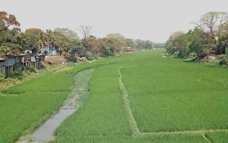 https://www.greenpage.com.bd/natural-environment/