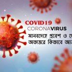 COVID-19-মানবদেহে-প্রবেশ-ও-দেহের-অভ্যন্তরে-কিভাবে-আক্রমণ-করে