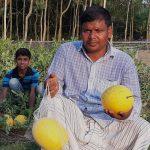 মহাদেবপুরে গোল্ডেন ক্রাউন তরমুজ চাষে কৃষকের সাফল্য