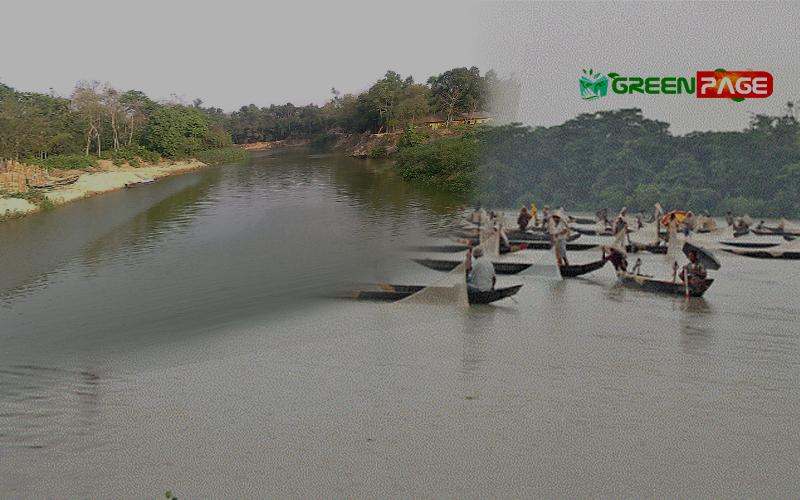 করোনাভাইরাস: হালদা নদীতে ডিম ছাড়ার অনুকূল পরিবেশ সৃষ্টি হয়েছে