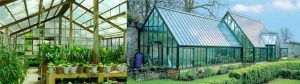 Green Houses for growing vegetables in cold countries during winter