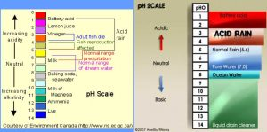 Ph-Scale-for-Acid-Rain