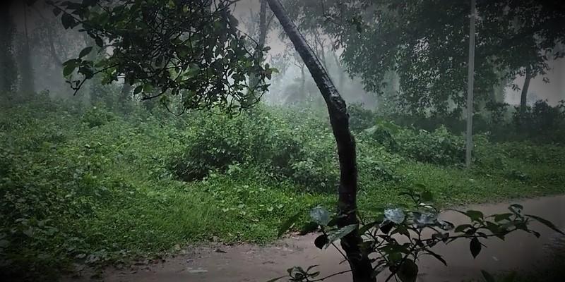 পশ্চিম-মধ্য বঙ্গোপসাগরে নিম্নচাপে অবস্থান