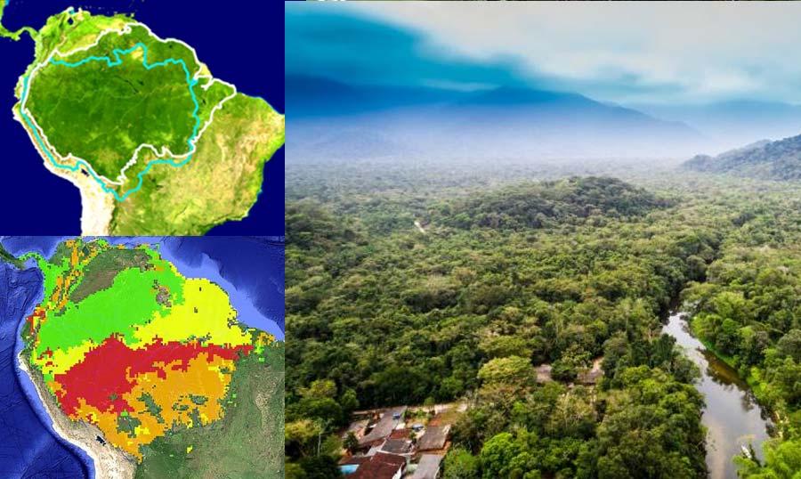 পৃথিবীর ফুসফুস আমাজন (Amazon Forest) আজ ক্ষতবিক্ষত