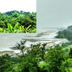 হিমছড়ি জাতীয় উদ্যানের ৭০০ একর সংরক্ষিত বনভূমি বরাদ্দে উদ্বেগ